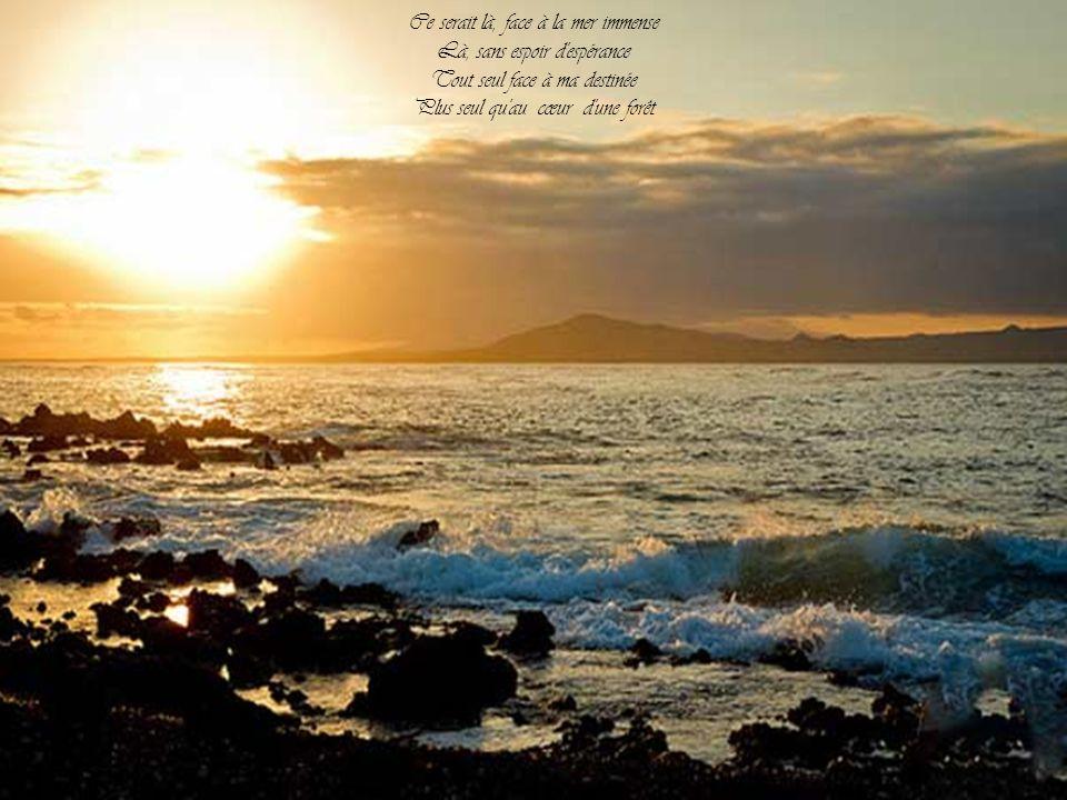 Une île, entre le ciel et l'eau Une île sans hommes ni bateaux Inculte, un peu comme une insulte Sauvage, sans espoir de voyage Une île, une île, entr