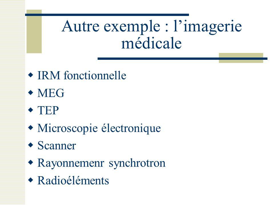 Autre exemple : l'imagerie médicale  IRM fonctionnelle  MEG  TEP  Microscopie électronique  Scanner  Rayonnemenr synchrotron  Radioéléments