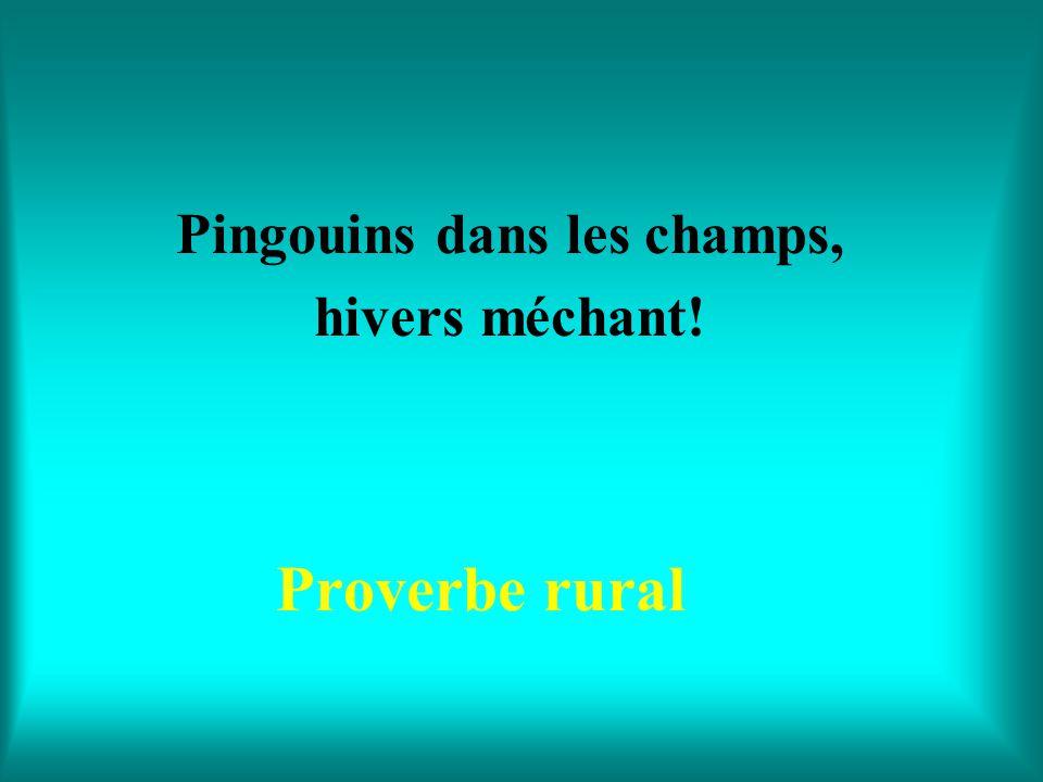 Quand le merle chante en mai, avril est fini! Proverbe rural belge