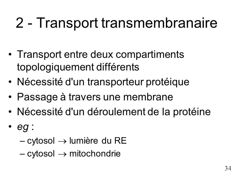34 2 - Transport transmembranaire •Transport entre deux compartiments topologiquement différents •Nécessité d'un transporteur protéique •Passage à tra