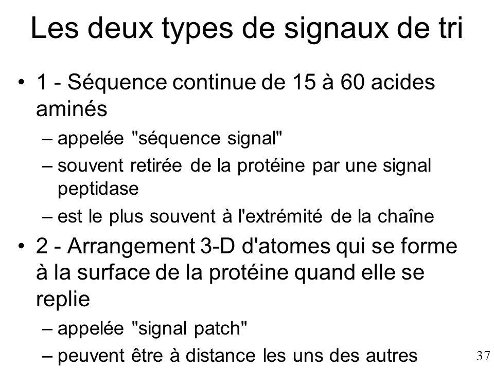37 Les deux types de signaux de tri •1 - Séquence continue de 15 à 60 acides aminés –appelée