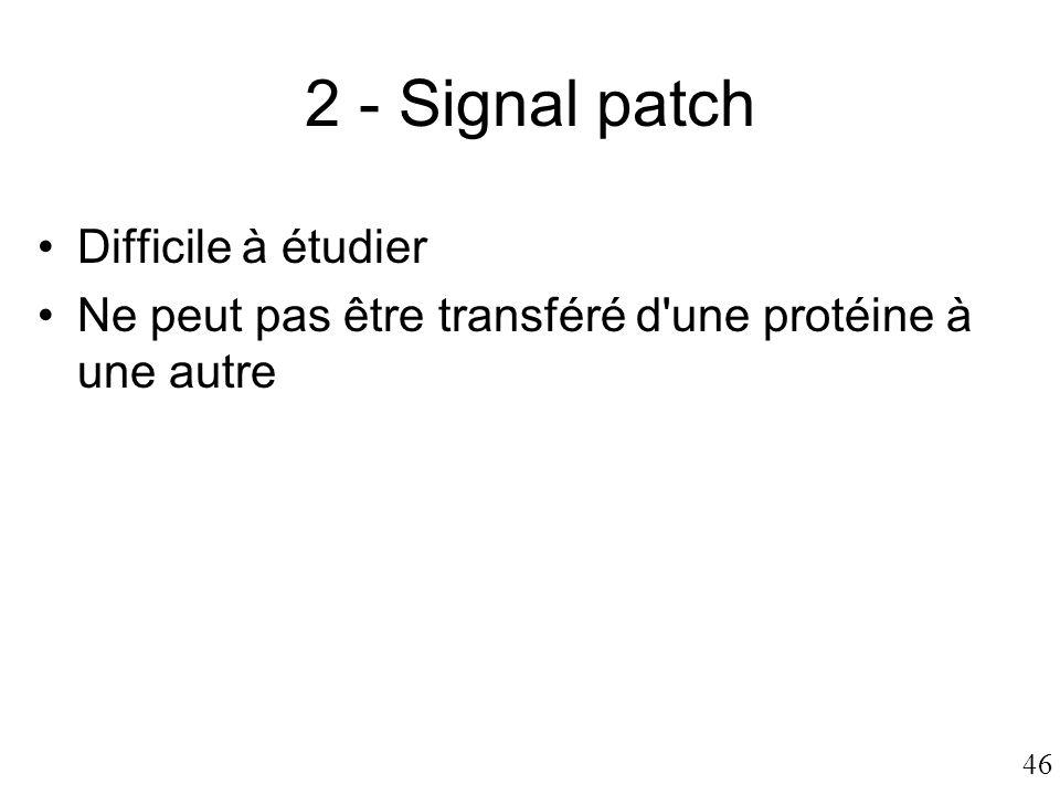 46 2 - Signal patch •Difficile à étudier •Ne peut pas être transféré d'une protéine à une autre
