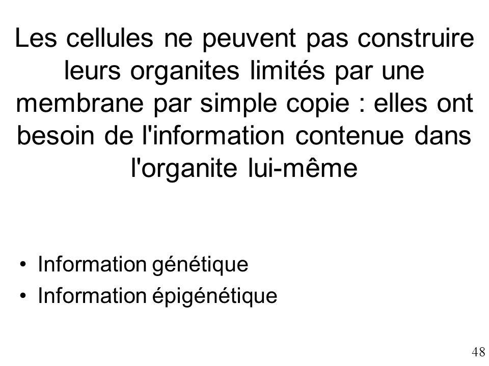 48 Les cellules ne peuvent pas construire leurs organites limités par une membrane par simple copie : elles ont besoin de l'information contenue dans