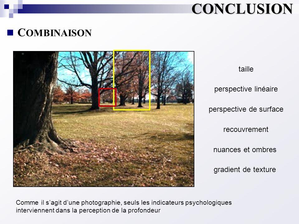  C OMBINAISON Comme il s'agit d'une photographie, seuls les indicateurs psychologiques interviennent dans la perception de la profondeur taille persp