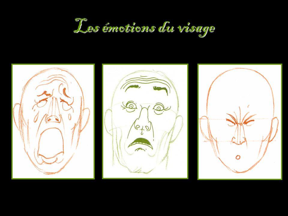 Les émotions du visage
