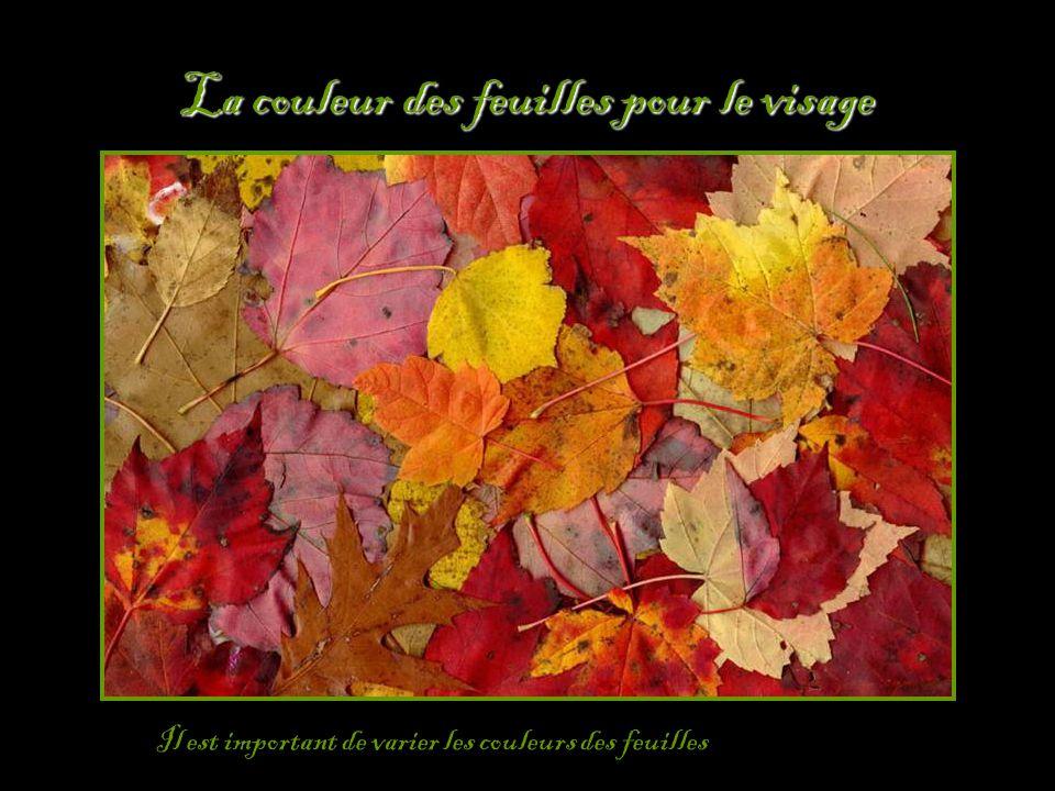 La couleur des feuilles pour le visage Il est important de varier les couleurs des feuilles