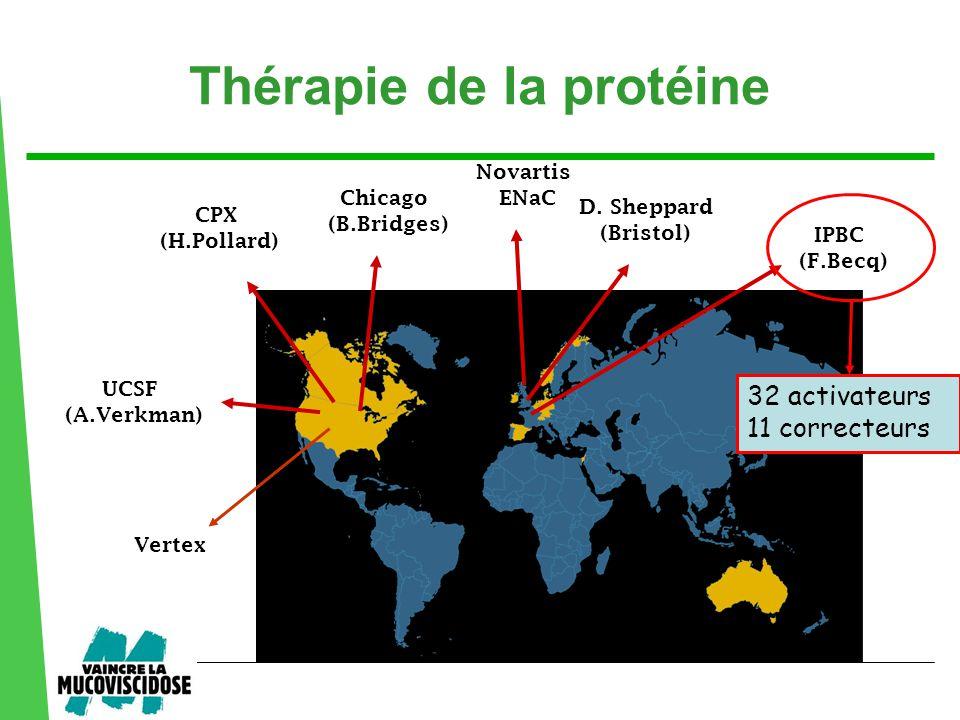 UCSF (A.Verkman) Vertex IPBC (F.Becq) D. Sheppard (Bristol) Chicago (B.Bridges) CPX (H.Pollard) Novartis ENaC 32 activateurs 11 correcteurs