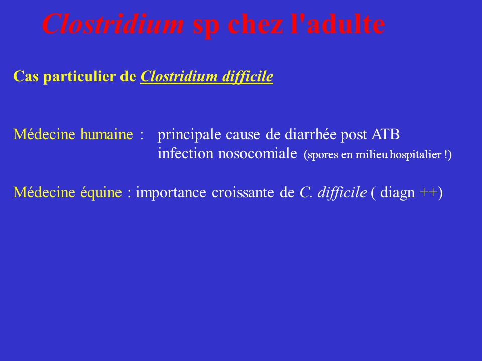 Clostridium sp chez l'adulte Cas particulier de Clostridium difficile Médecine humaine : principale cause de diarrhée post ATB infection nosocomiale (