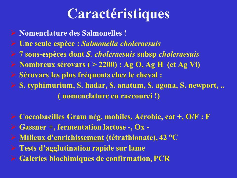 Caractéristiques  Nomenclature des Salmonelles !  Une seule espèce : Salmonella choleraesuis  7 sous-espèces dont S. choleraesuis subsp choleraesui