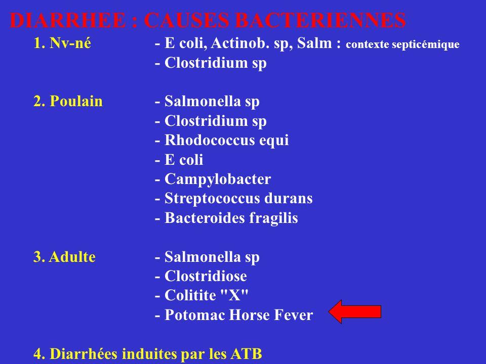DIARRHEE : CAUSES BACTERIENNES 1. Nv-né- E coli, Actinob. sp, Salm : contexte septicémique - Clostridium sp 2. Poulain- Salmonella sp - Clostridium sp