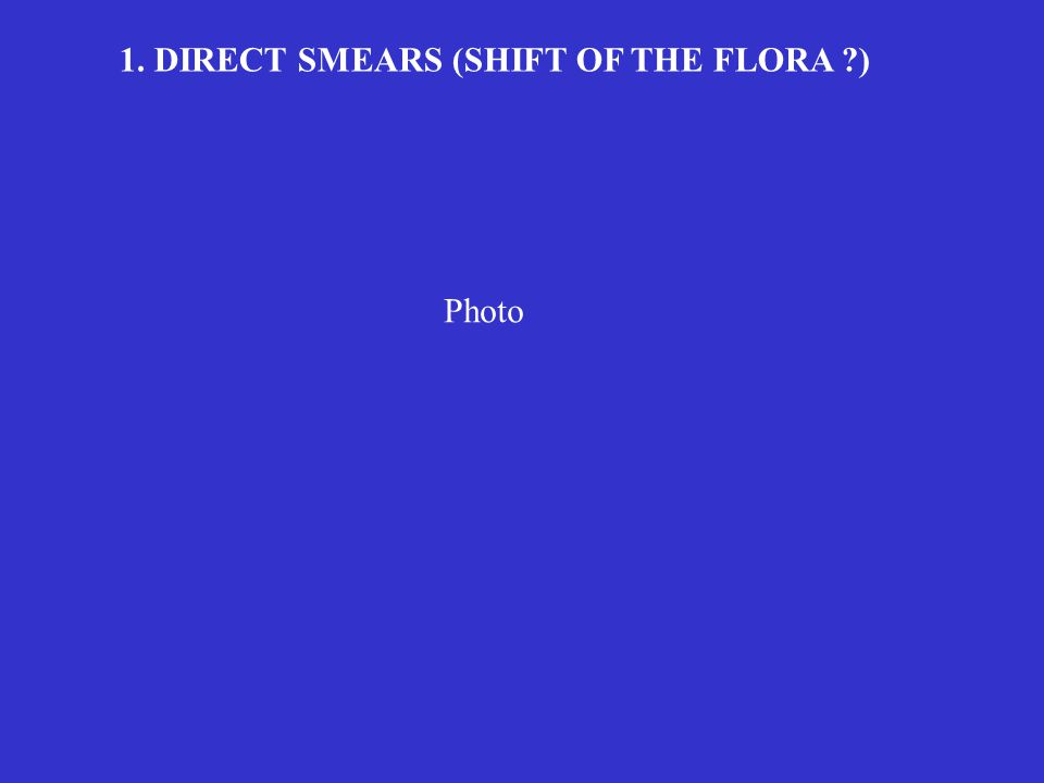 1. DIRECT SMEARS (SHIFT OF THE FLORA ?) Photo