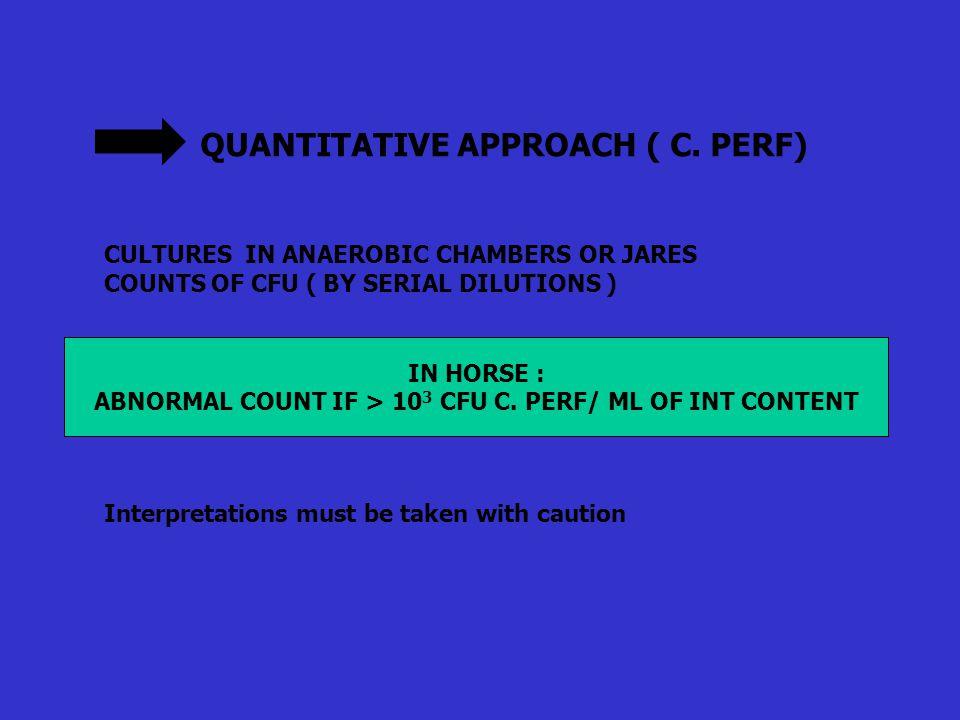 QUANTITATIVE APPROACH ( C.