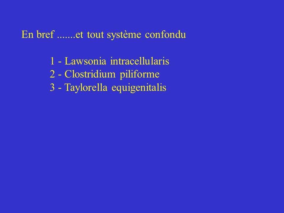En bref.......et tout système confondu 1 - Lawsonia intracellularis 2 - Clostridium piliforme 3 - Taylorella equigenitalis