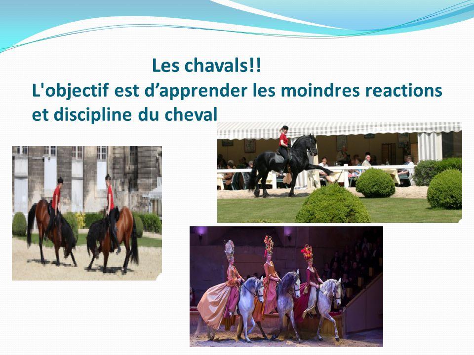 Les chavals!! L objectif est d'apprender les moindres reactions et discipline du cheval