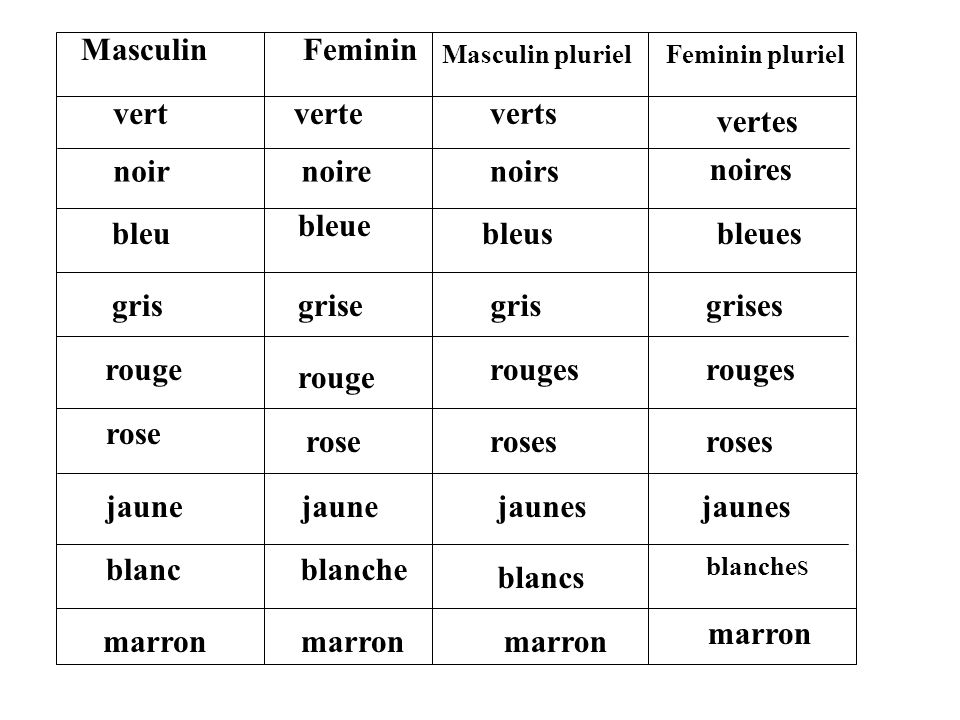 noir MascFem ? Masc pluralFem plural noire vertes noirs bleues bleu noir noire vertes noirs bleues bleu vert grise