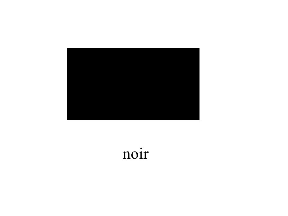 noir MascFem .