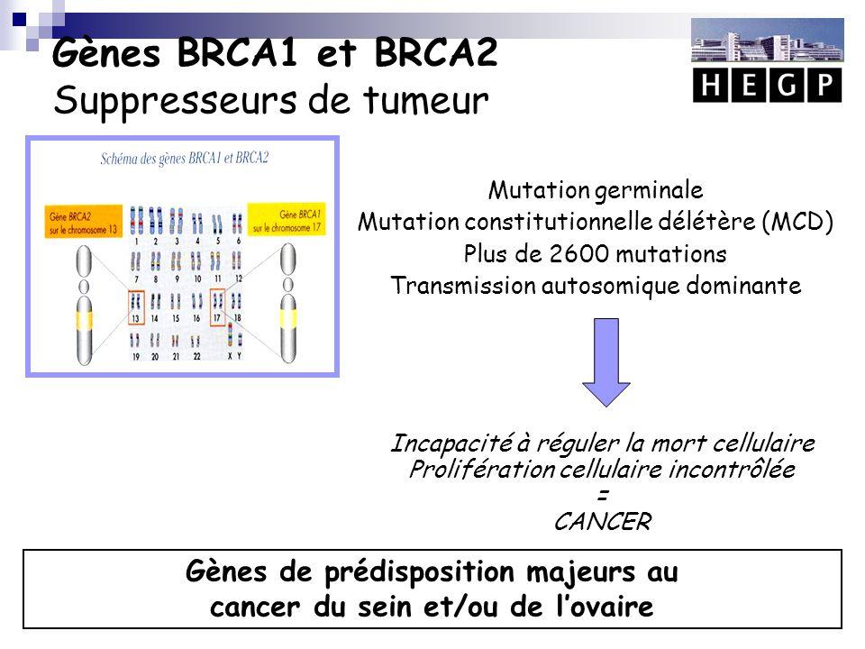 Nombre de femmes porteuses de mutations BRCA1/2  Estimations britanniques: 2%o Antoniou AC, Br J Cancer 2002  1/40 à 50 dans la population juive Ashkénase  En France:  40 000 femmes de 20 à 70 ans porteuses d'une mutation  Incidence: 596 cas/an INSEE
