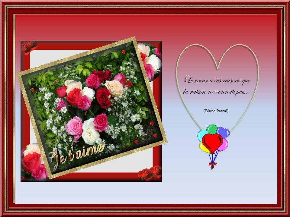 Le coeur a ses raisons que la raison ne connait pas... (Blaise Pascal)