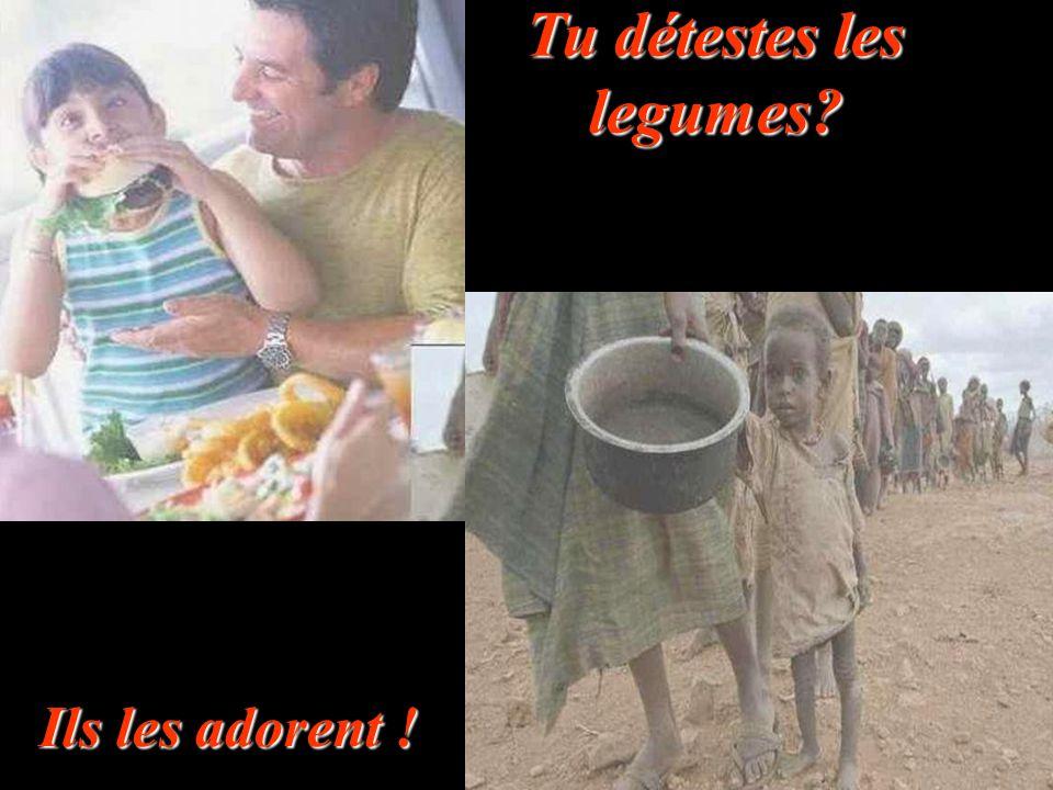 Tu es au régime? Ils meurent de faim !!!