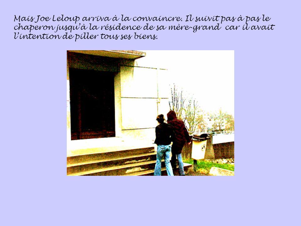 Mais Joe Leloup arriva à la convaincre.