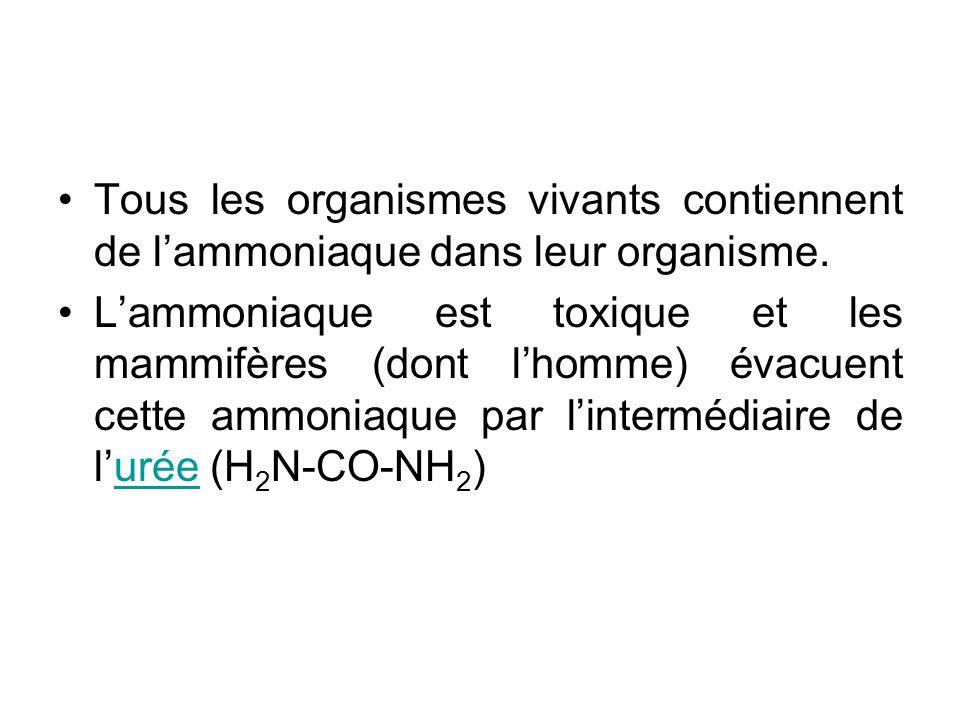 •Tous les organismes vivants contiennent de l'ammoniaque dans leur organisme.