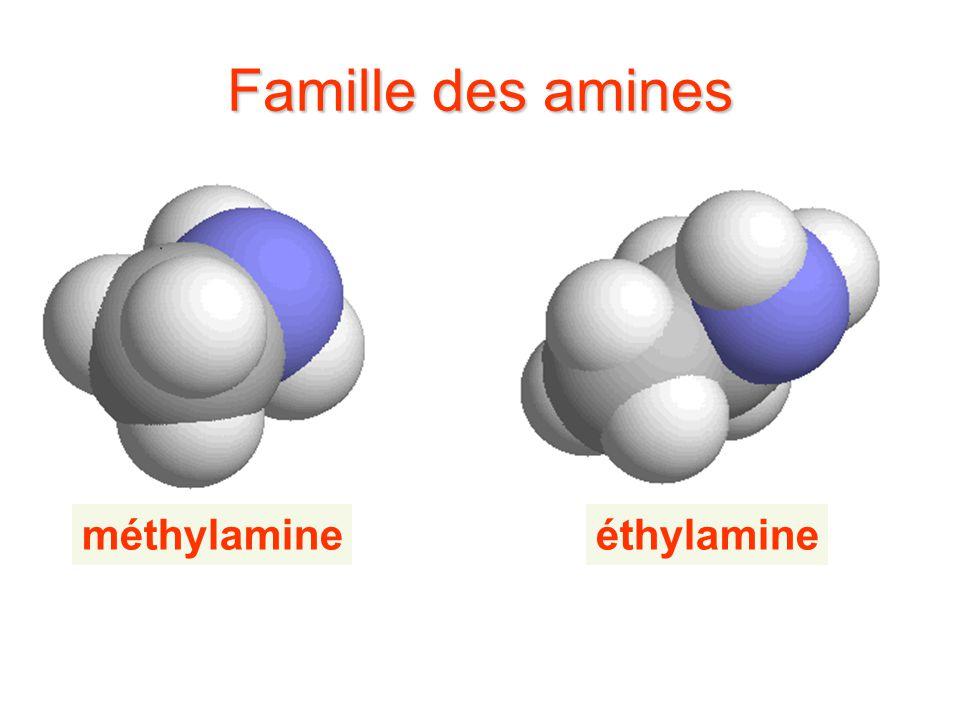 Famille des amines méthylamineéthylamine