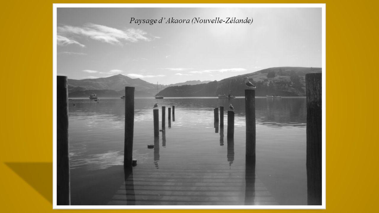Paysage d' Akaora (Nouvelle-Zélande)