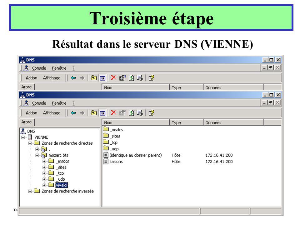 Yonel GRUSSON Troisième étape Résultat dans le serveur DNS (VIENNE)