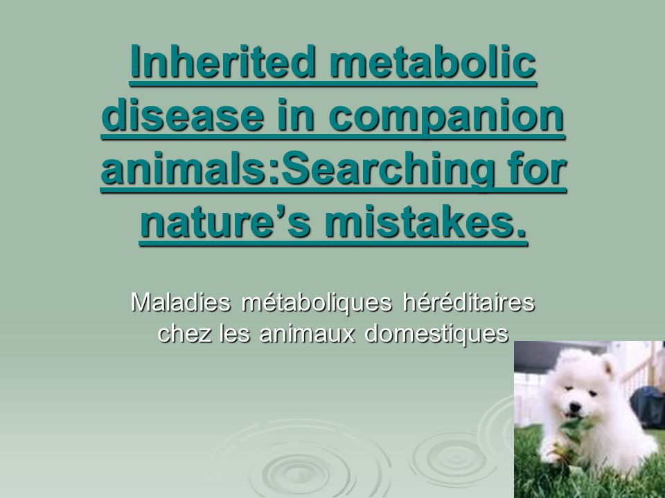 Inherited metabolic disease in companion animals:Searching for nature's mistakes. Maladies métaboliques héréditaires chez les animaux domestiques