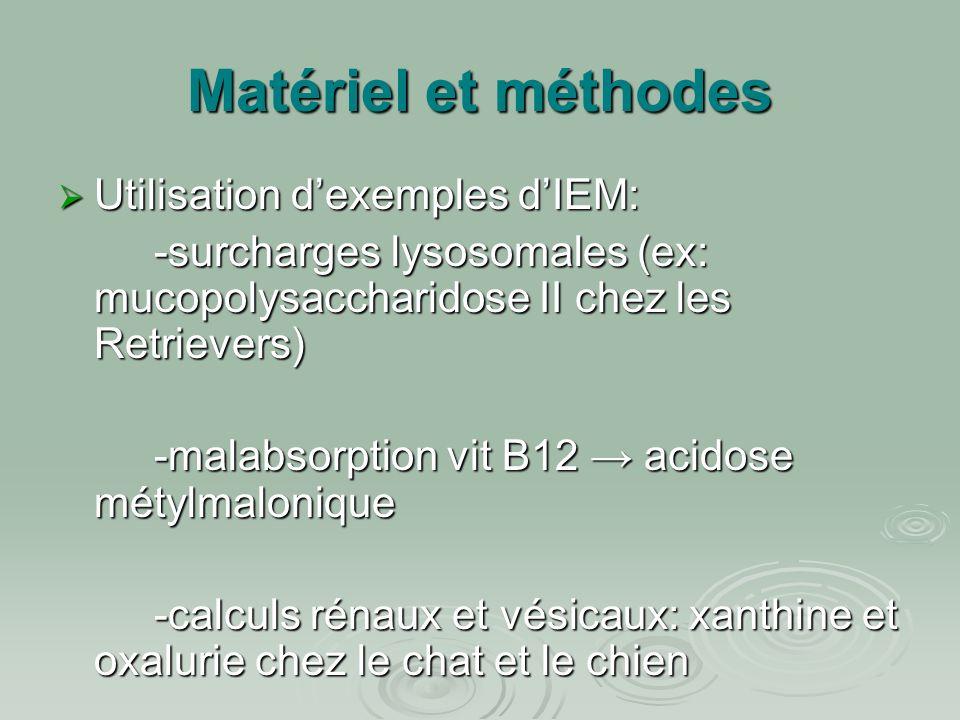 Matériel et méthodes  Utilisation d'exemples d'IEM: -surcharges lysosomales (ex: mucopolysaccharidose II chez les Retrievers) -malabsorption vit B12