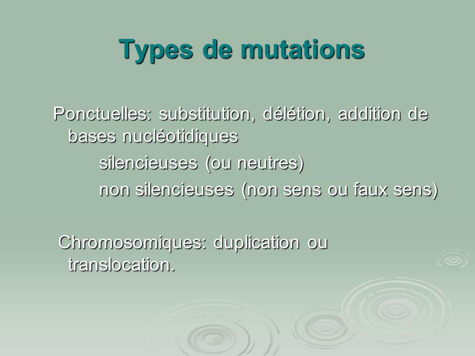 Types de mutations Ponctuelles: substitution, délétion, addition de bases nucléotidiques silencieuses (ou neutres) silencieuses (ou neutres) non silen