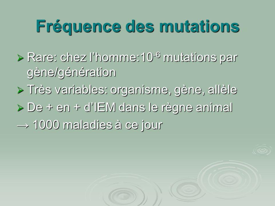 Fréquence des mutations  Rare: chez l'homme:10 -6 mutations par gène/génération  Très variables: organisme, gène, allèle  De + en + d'IEM dans le r