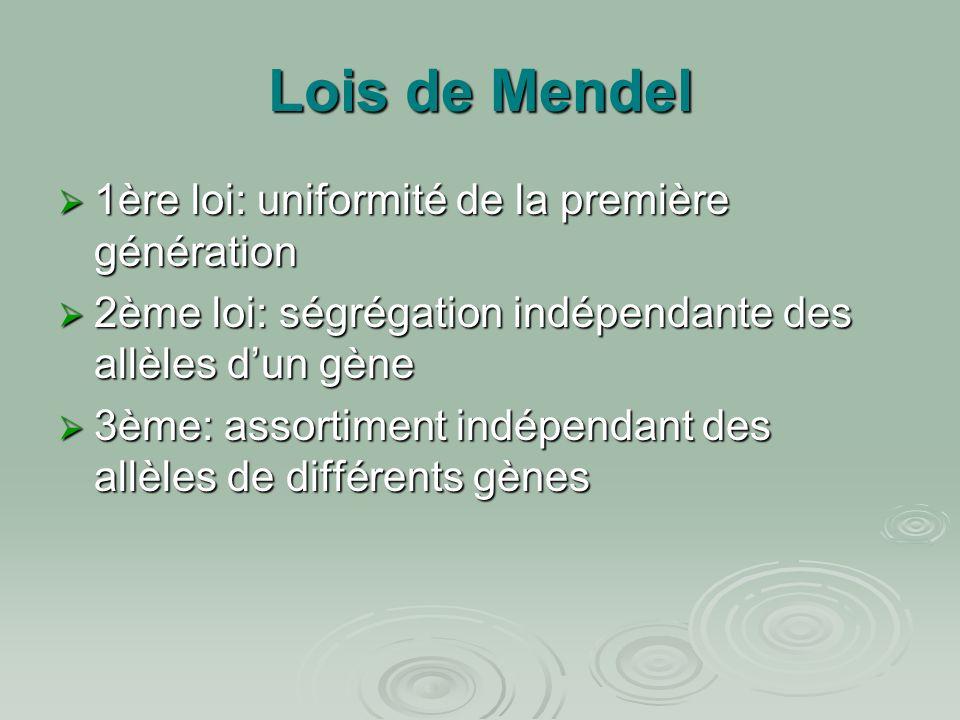 Lois de Mendel  1ère loi: uniformité de la première génération  2ème loi: ségrégation indépendante des allèles d'un gène  3ème: assortiment indépen