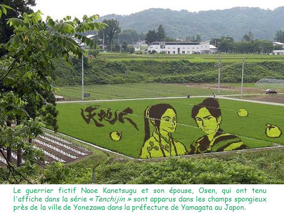 Le guerrier fictif Naoe Kanetsugu et son épouse, Osen, qui ont tenu l'affiche dans la série «Tenchijin » sont apparus dans les champs spongieux près d