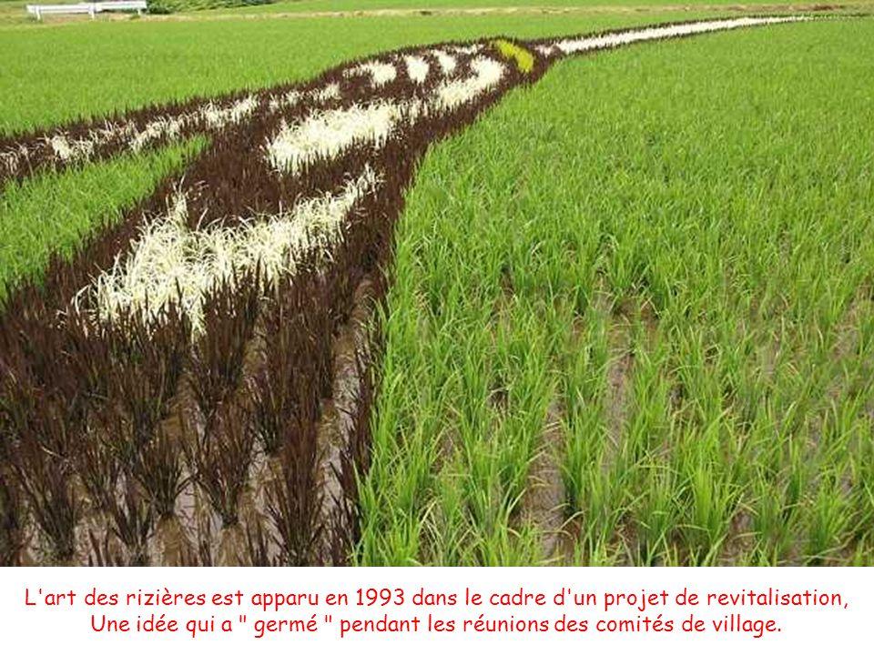 L art des rizières est apparu en 1993 dans le cadre d un projet de revitalisation, Une idée qui a germé pendant les réunions des comités de village.