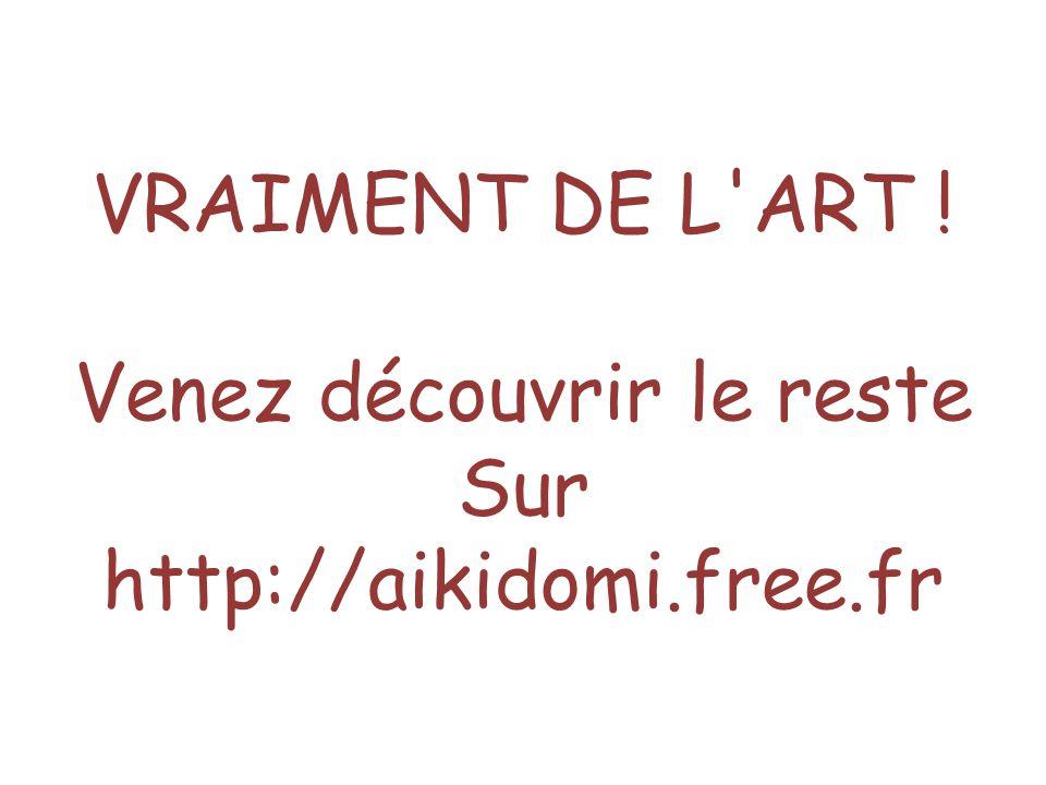 VRAIMENT DE L ART ! Venez découvrir le reste Sur http://aikidomi.free.fr