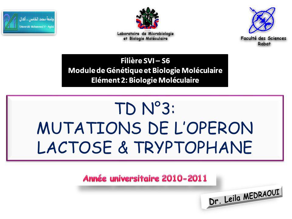TD N°3: MUTATIONS DE L'OPERON LACTOSE & TRYPTOPHANE Faculté des Sciences Rabat Faculté des Sciences Rabat Laboratoire de Microbiologie et Biologie Mol