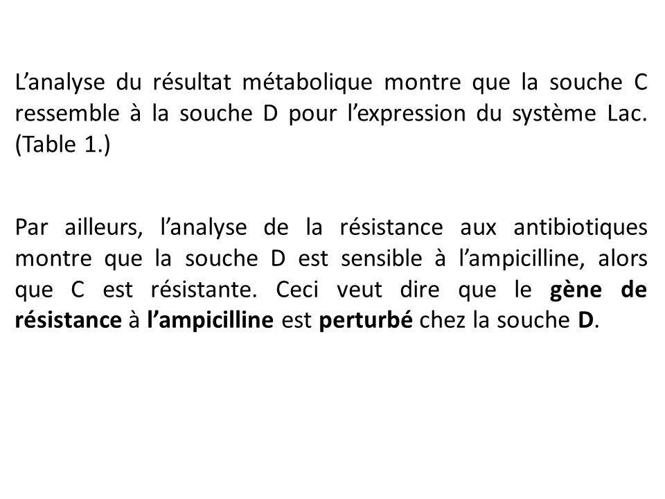 Par ailleurs, l'analyse de la résistance aux antibiotiques montre que la souche D est sensible à l'ampicilline, alors que C est résistante. Ceci veut