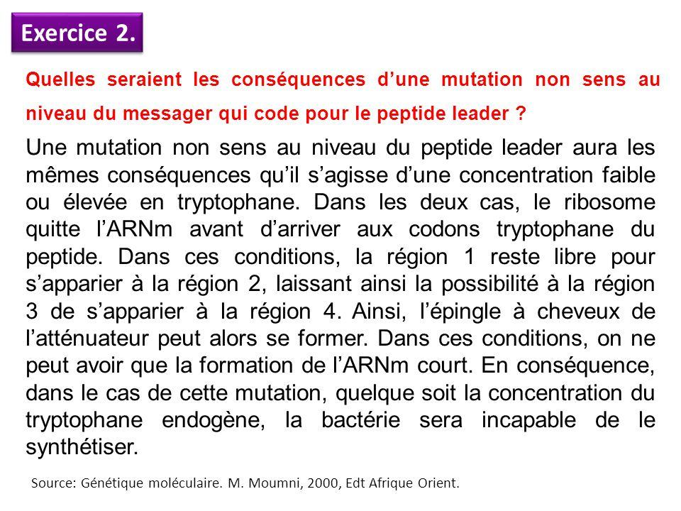 Exercice 2. Quelles seraient les conséquences d'une mutation non sens au niveau du messager qui code pour le peptide leader ? Une mutation non sens au