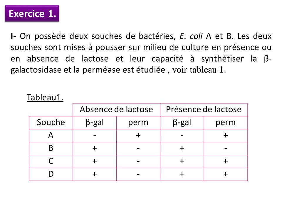 Exercice 1. I- On possède deux souches de bactéries, E. coli A et B. Les deux souches sont mises à pousser sur milieu de culture en présence ou en abs