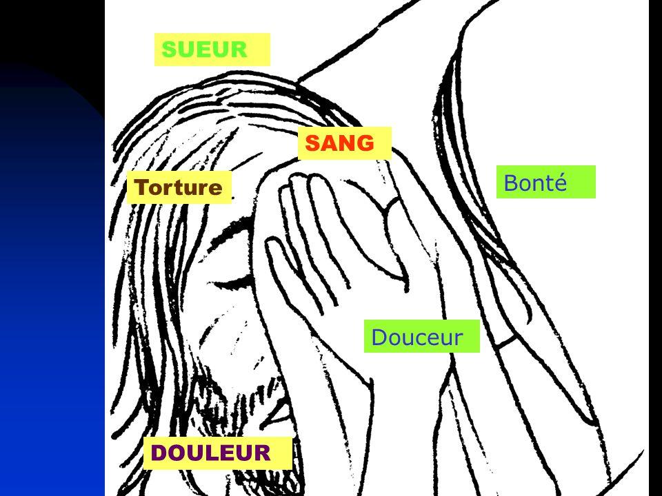18 SUEUR SANG DOULEUR Douceur Bonté Torture