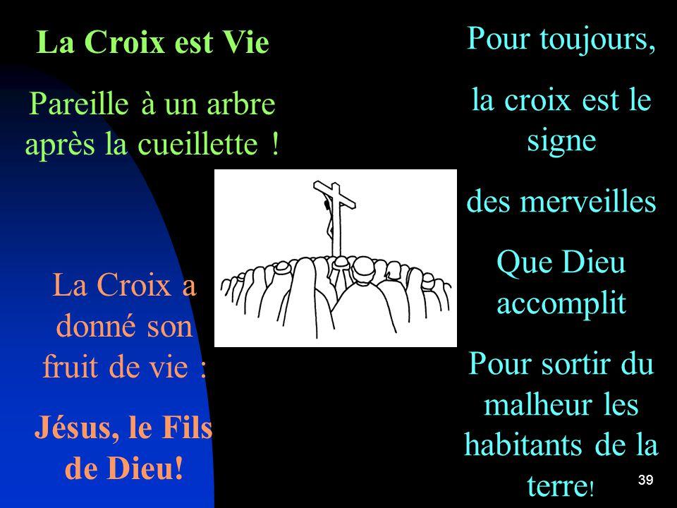 39 La Croix est Vie Pareille à un arbre après la cueillette .