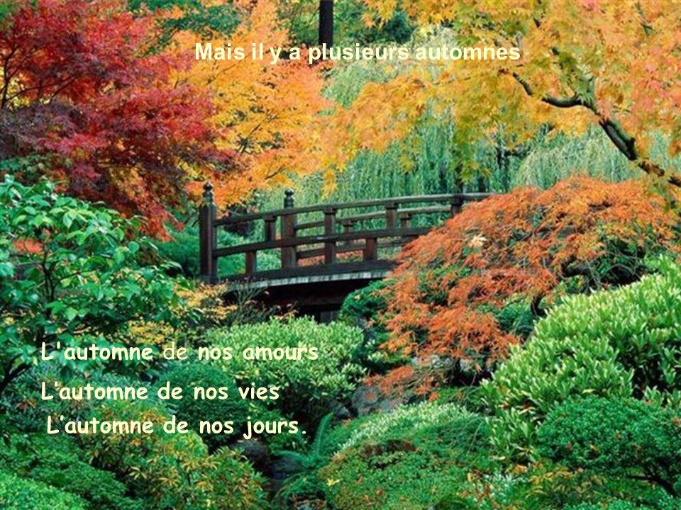 Nos automnes Plusieurs disent que l automne est une saison morte.