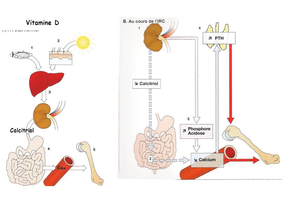 Vitamine D Calcitriol