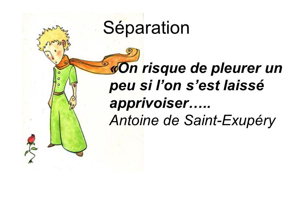 «On risque de pleurer un peu si l'on s'est laissé apprivoiser….. Antoine de Saint-Exupéry Séparation