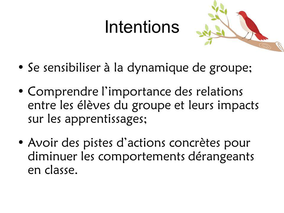Intentions •Se sensibiliser à la dynamique de groupe; •Comprendre l'importance des relations entre les élèves du groupe et leurs impacts sur les appre
