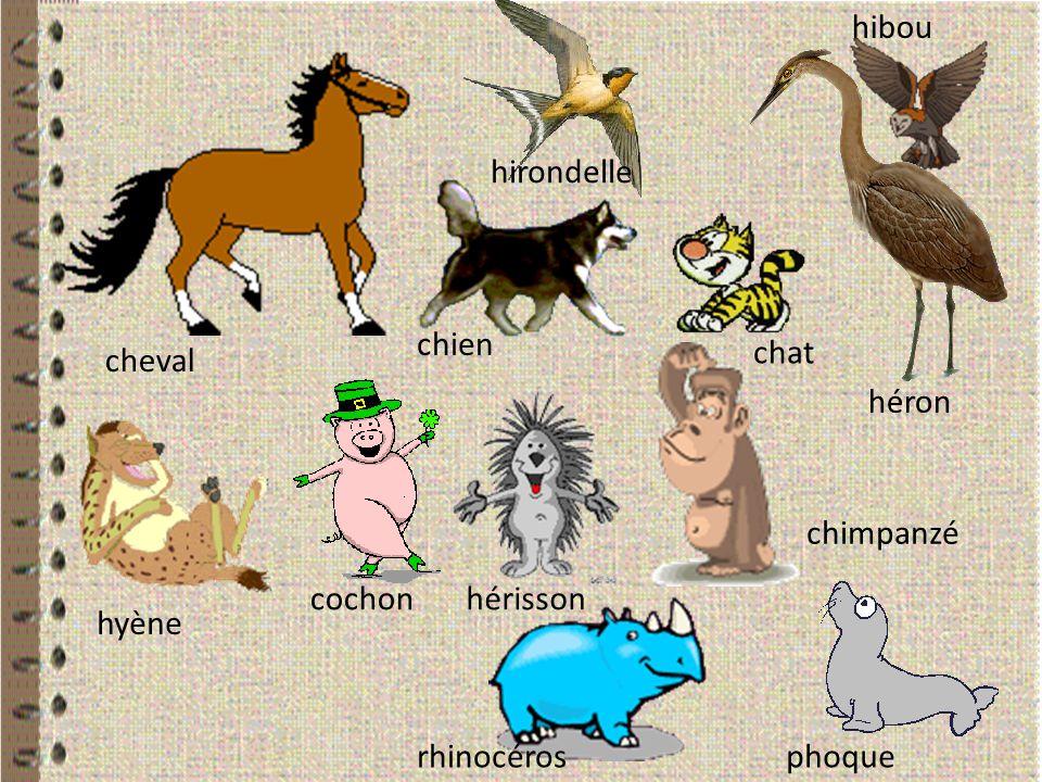 cheval chien hirondelle chat hibou héron hyène cochonhérisson chimpanzé rhinocérosphoque