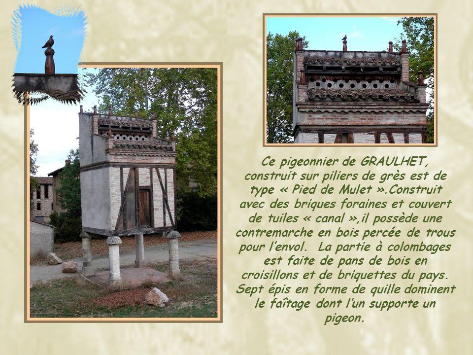 A maintes reprises, passant par LAVAUR, j'avais remarqué ce que je prenais pour une échauguette… En pleine ville, cette poivrière est construite en angle du toit avec des briques traditionnelles du Sud-ouest.