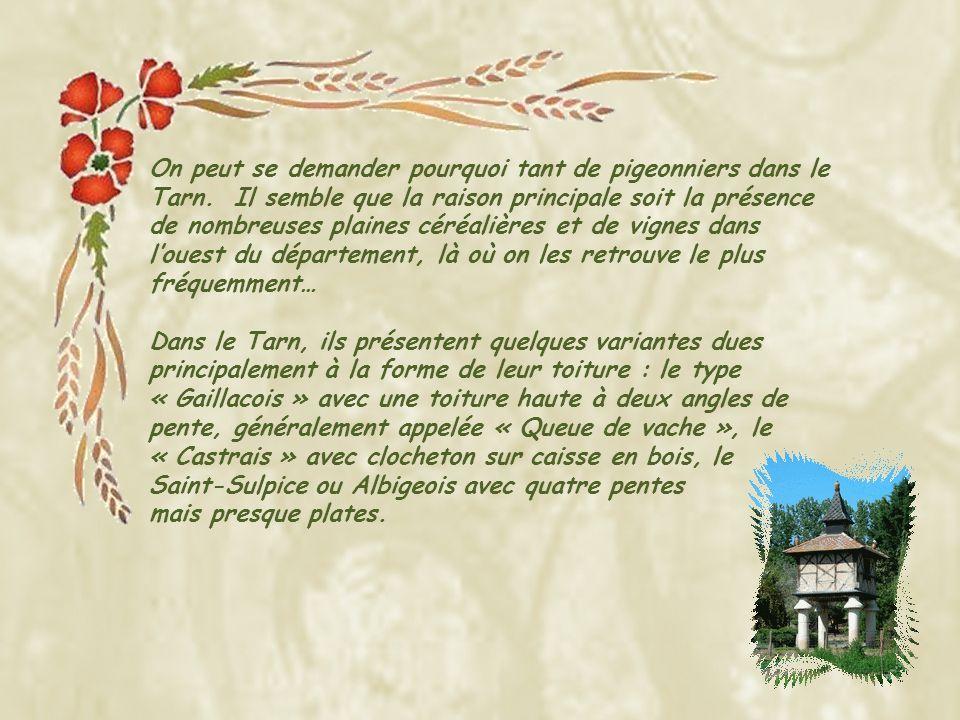 Ce schéma pris sur le document du Comité départemental du Tourisme du Tarn permettra de mieux identifier les différentes composantes des pigeonniers.