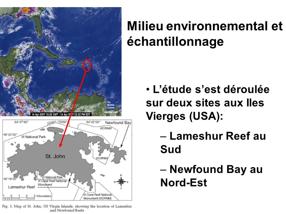 REFERENCES:  Global Coral Reef Monitoring Network  Météo France  CARICOMP  Google earth